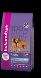 Eukanuba Junior Large Breed 15 kg